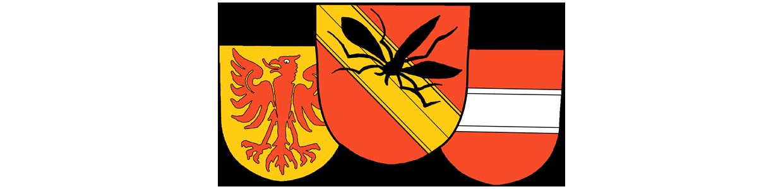 """Narrenzunft """"D'Rhiischnooge"""" Neuenburg am Rhein e.V."""